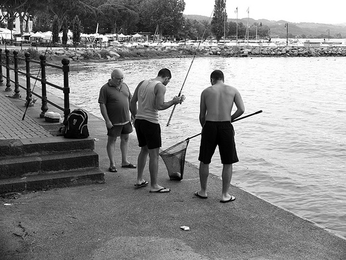 Заядлые рыбаки найдут здесь себе отдушину