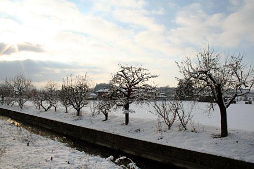 Снег в Италии