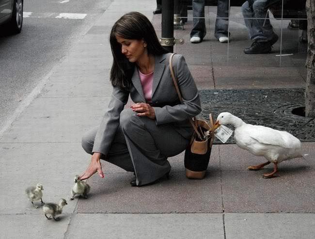 http://www.italia-ru.it/files/PickPocketGang.jpg