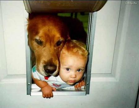 Все мы родом из детства...