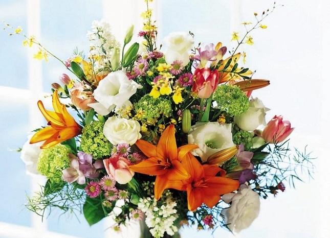 http://italia-ru.com/files/fiori_3.jpg