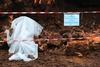 В Помпеях из-за проливных дождей произошло очередное обрушение