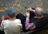 Пожилая итальянская пара решила развестить из-за ревности после 77 лет совместно