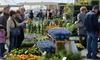 Весенняя ярмарка в Генуе: цветочные ковры на фоне морских пейзажей