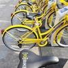 Власти Турина будут выплачивать бонус служащим, которые едут на работу на велоси