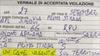 В провинции Милана женщина, спасшая потерявшуюся собаку, была оштрафована полици