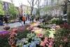 Милан: в деловую столицу возвращается выставка-ярмарка цветов