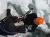 В итальянских Альпах обнаружили бактерии «поедающие» смог