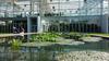 Сад биоразнообразия в Падуе становится структурой Hi-tech