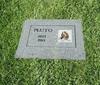 В Милане появилось первое кладбище для домашних животных