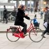 Провинция Лукки: ездишь на работу на велосипеде - коммуна выплачивает 600 евро б