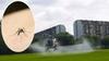 Милан переживает нашествие комаров