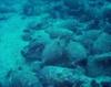 У берегов Сицилии обнаружен древнеримский корабль, на борту которого находятся 5