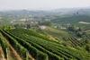 Всемирное наследие ЮНЕСКО - винодельческие зоны Ланге, Роеро и Монферрато