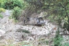 Из-за непогоды в Калабрии погибли два человека