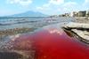 Шок в Кастелламаре: 19 июля на глазах отдыхающих море приобрело кроваво-красный