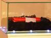 Сумочка Софи Лорен была продана за 167 тысяч евро на благотворительном аукционе,