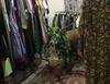 На курорте Кортина-д-Ампеццо олень зашел в магазин одежды