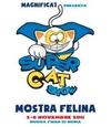 С 5 по 6 ноября в Риме пройдет выставка «Supercat Show 2011»
