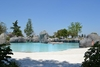 """Турин: в биопарке """"Zoom"""" посетители могут поплавать с пингвинами"""