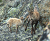 """Il migliore dei mondi possibili"": великолепие природы в Национальном парке Гран"