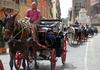 Прогулка на конной повозке по Вечному городу могла обойтись туристам в 550 евро