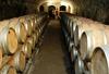 Довольно бочек: теперь итальянское вино будет производиться в глиняных амфорах