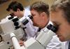 Итальянцы создали супер-микроскоп для изучения онкологических заболеваний и боле