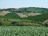 В Италии проведут день агротуризма и сельских пейзажей