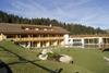 В Италии построили первый антиаллергенный отель