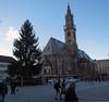 В Больцано уже доставлена новогодняя елка