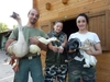 Оставшихся без крова домашних животных ждут в центре реабилитации