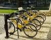 Среди жителей Италии наблюдается велосипедный бум