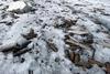 В Альпах Трентино найден арсенал времен первой мировой войны