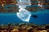 В Тирренском море 95% всего мусора составляют пластиковые отходы