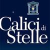 Calici di Stelle 2014 - фестиваль, посвященный итальянскому вину