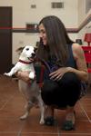 Итальянские исследователи обнаружили, что собака в сотоянии распознавать лицо св