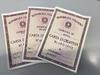 Коронавирус: срок действия документов, удостоверяющих личность, продлевается авт
