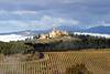 Тоскана признана лучшей территорией энотуризма