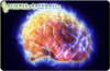 Исследователи обнаружили, что «отключив» молекулу белка в головном мозге можно п