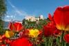 В Мерано открывают двери ботанические сады
