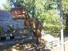 В центре Турина поселятся динозавры