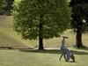 Скульптуры Линна Чедвика появились в садах Боболи и Бардини во Флоренции