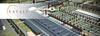 В Италии откроют Диснейленд для гурманов