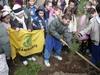 Завтра в Италии будут отмечать праздник дерева