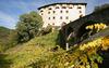"""Мерано: в садах императрицы Сисси все готово к началу винного фестиваля """"Giardin"""