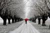 Снег и сибирские холода придут в Италию