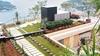 Крыши Рима покроются садами