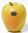 Первый склад в мире для хранения яблок под землей появился в Трентино