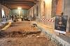 Итальянские археологи обнаружили останки Мона Лизы